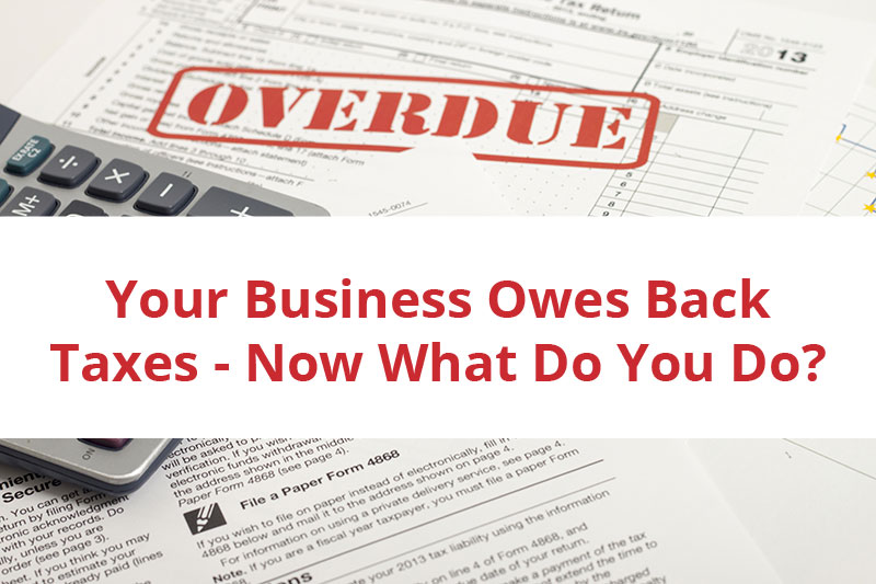 Things to do when your business has overdue back taxes